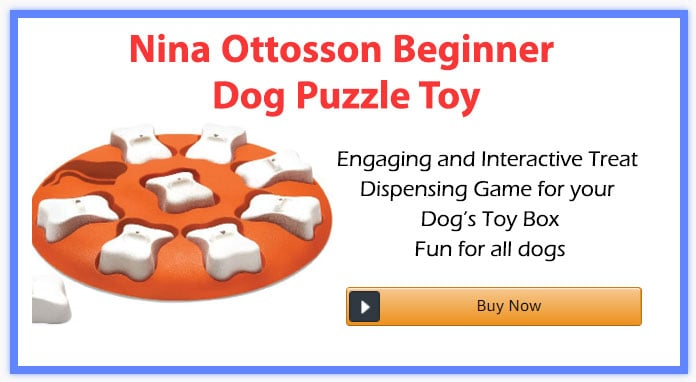 Nina Ottosson Beginner Dog Puzzle Toy